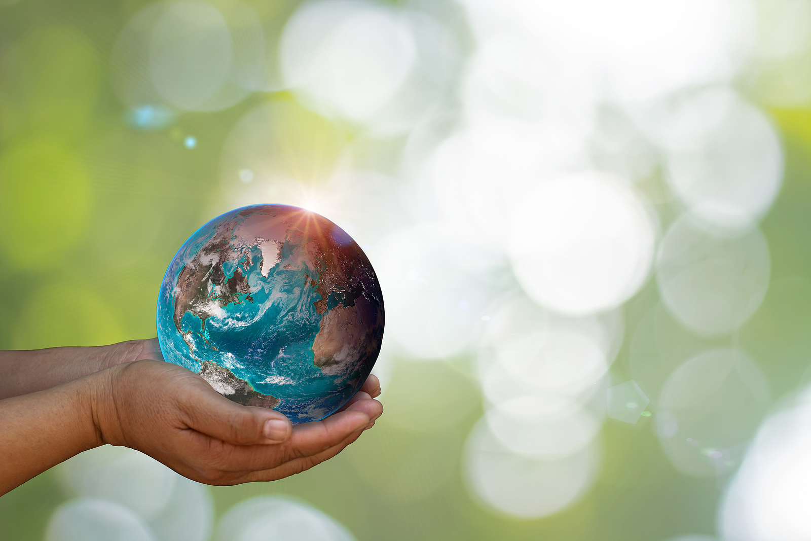 Earth Was Holding In Human Hands On Green Nature Blurred Background